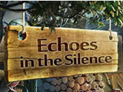 Echoes in the Silence