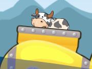 Freaky Cows