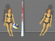 Ragdoll Volleyball